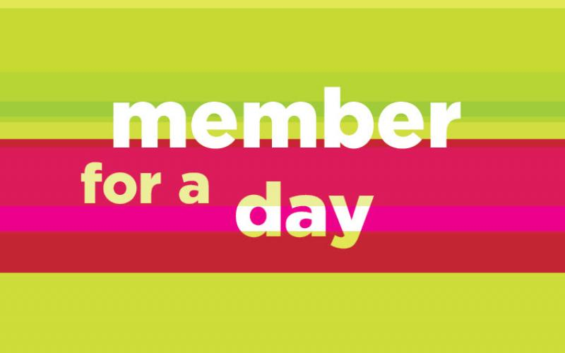 Member for a Day graphic